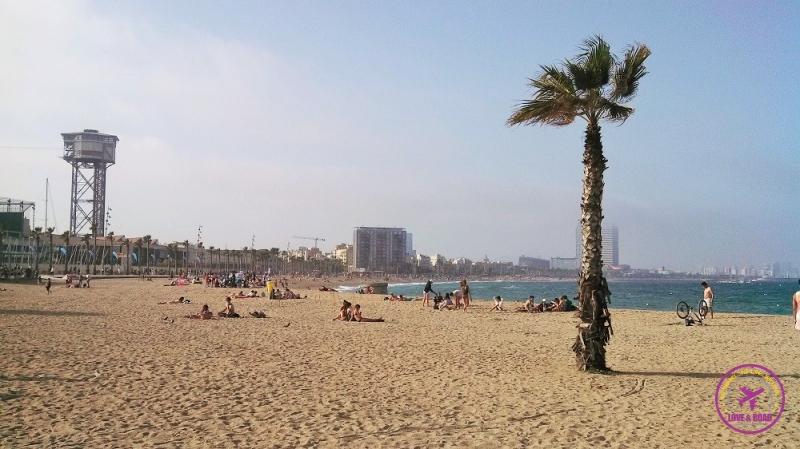 dicas para aproveitar Barcelona