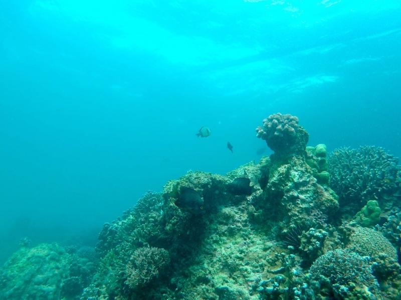 Boracay Philippines 7 8a.jpg