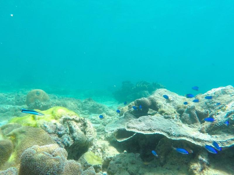 Boracay Philippines 7 8c.jpg