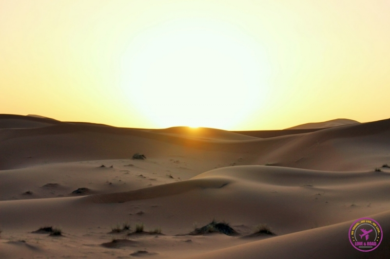 Moroccan Desert 13
