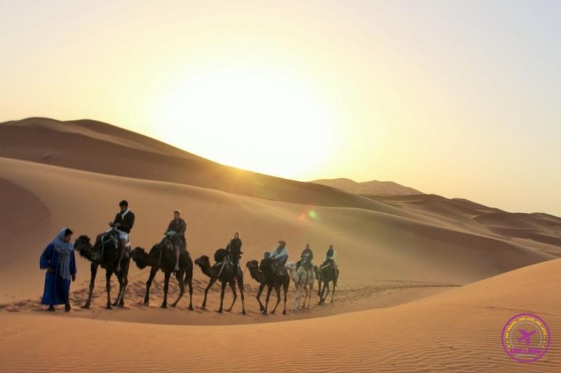 Moroccan Desert 14