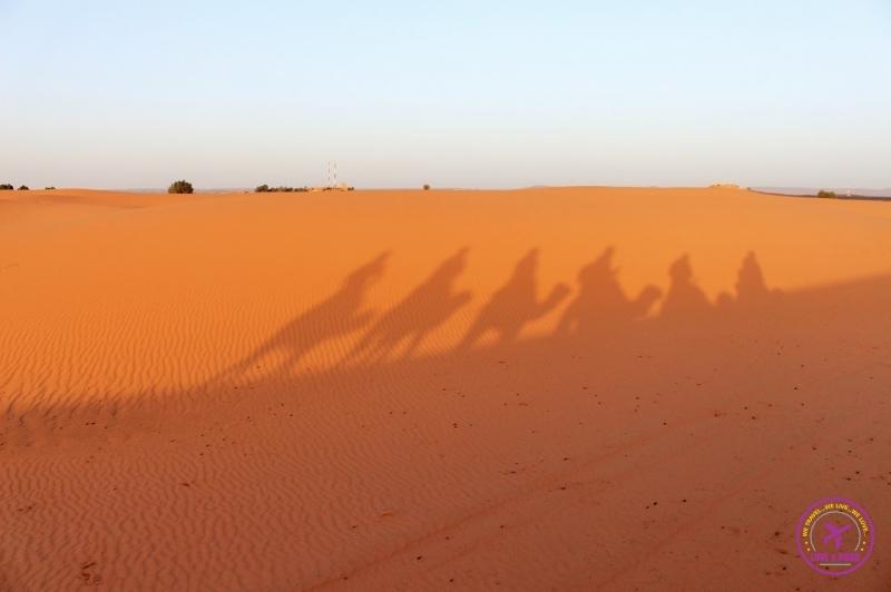 Moroccan Desert 16