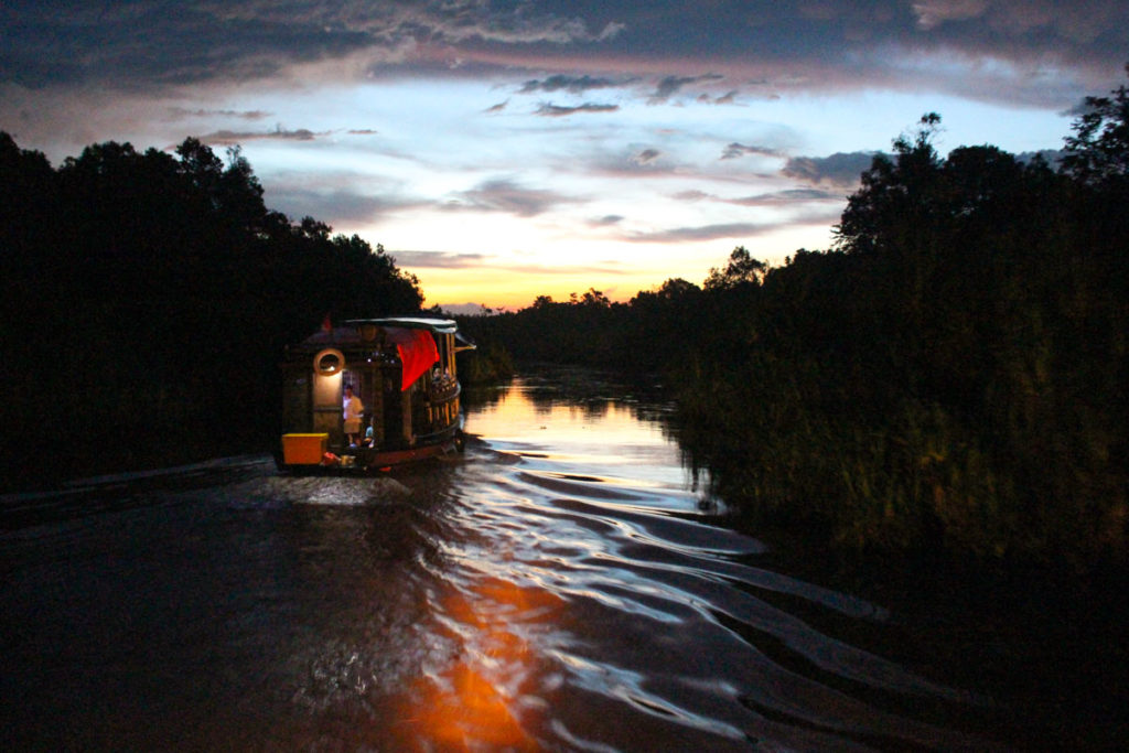 Sunset at Tanjung Puting National Park is magical. Sleep on the klotok boat is an experience you will never forget.