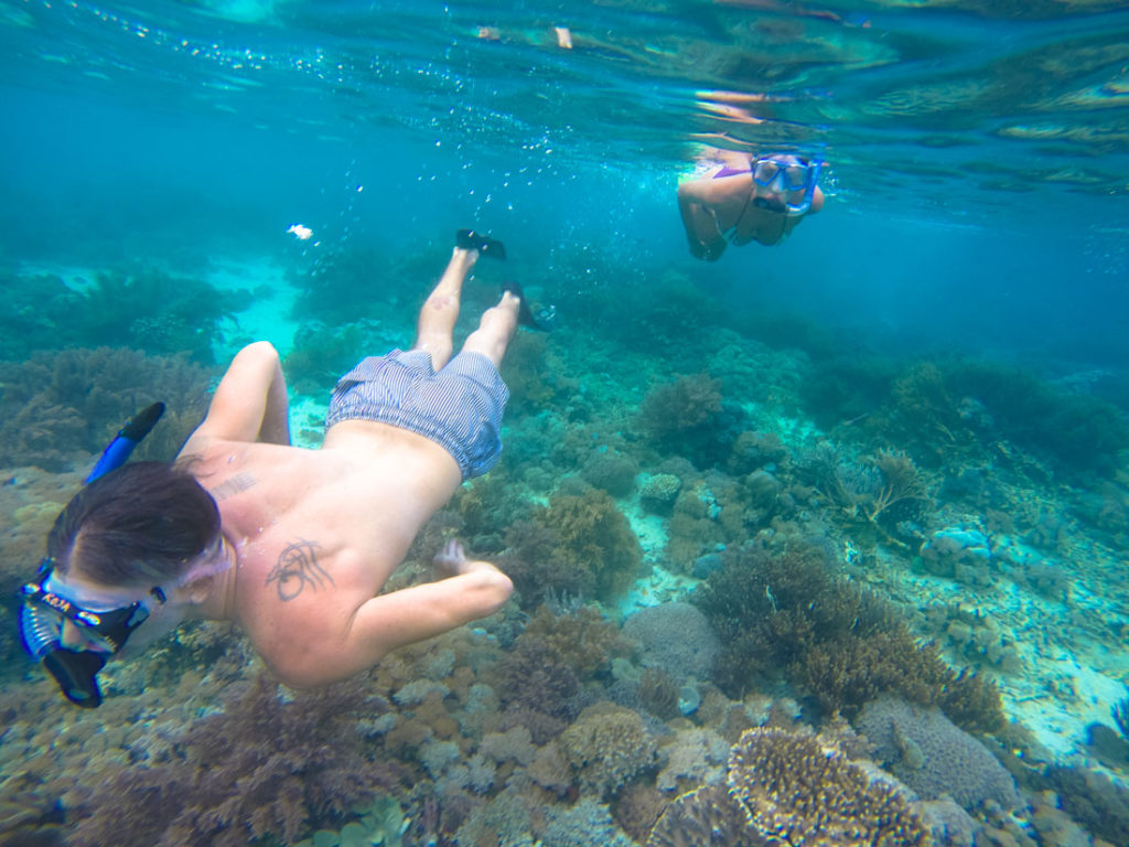 Reserve some time for snorkeling on your Trip to Komodo Island