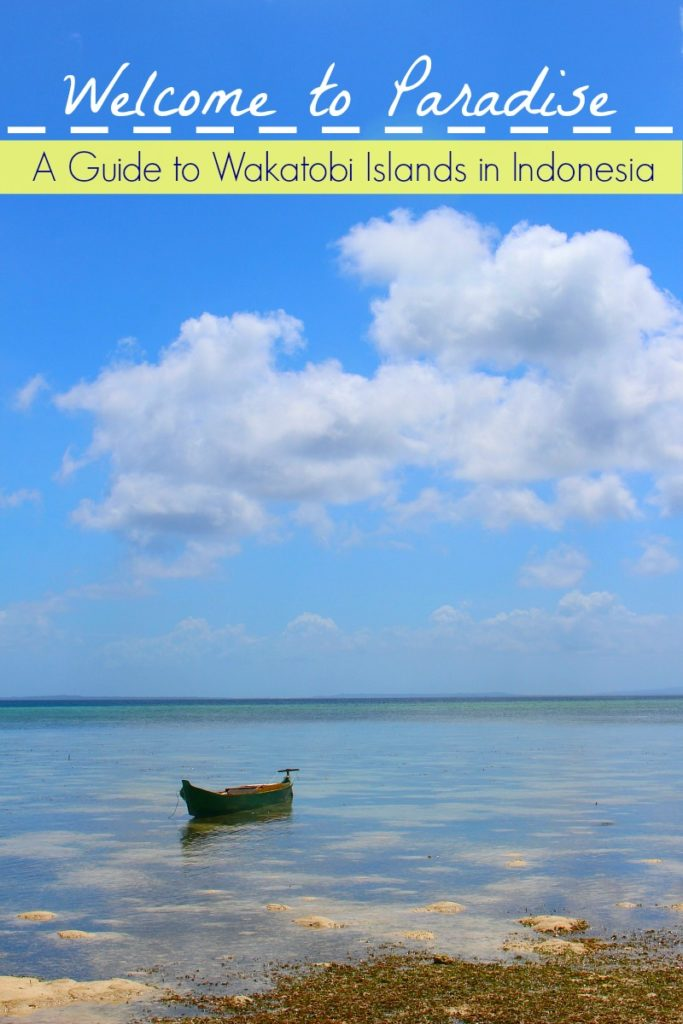 Mini Guide to The Best of Wakatobi Islands in Indonesia! How to travel to Wakatobi Marine Park, what to do and where to stay. A guide for nature lovers and water activities enthusiasts.