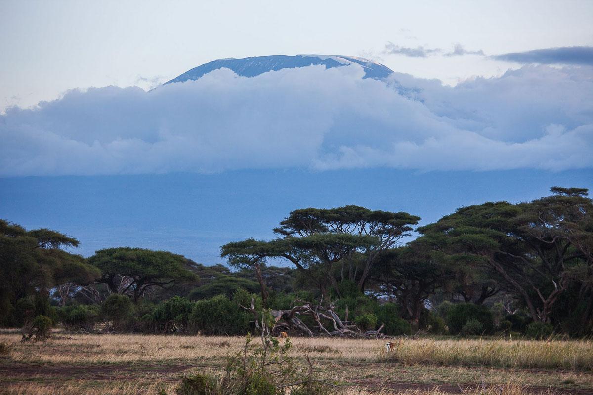 Climbing the Kilimanjaro, a lifetime experience - Love & Road