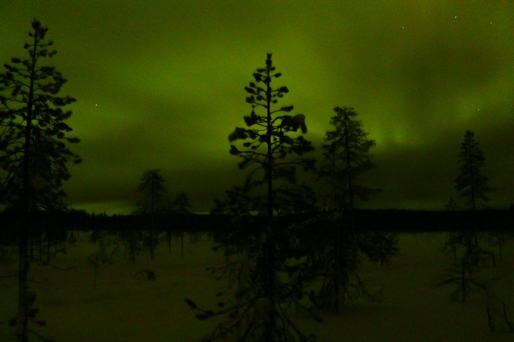 A melhor época para ver a aurora boreal em Rovaniemi é no inverno.
