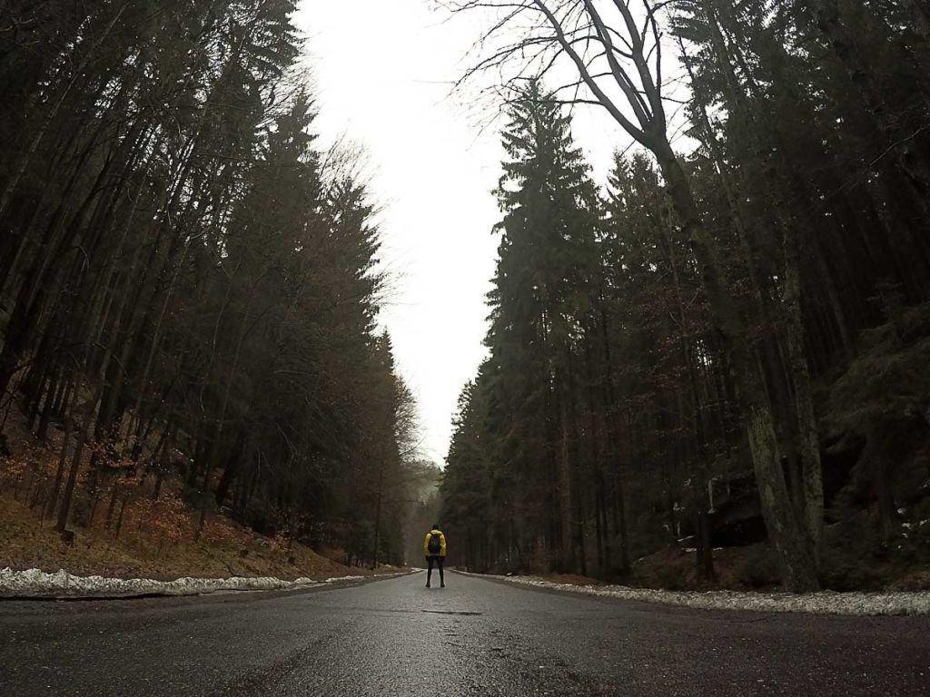 O Parque Boêmia Suíça fica no norte da República Tcheca, há vários passeios saindo de Praga até a Boêmia.