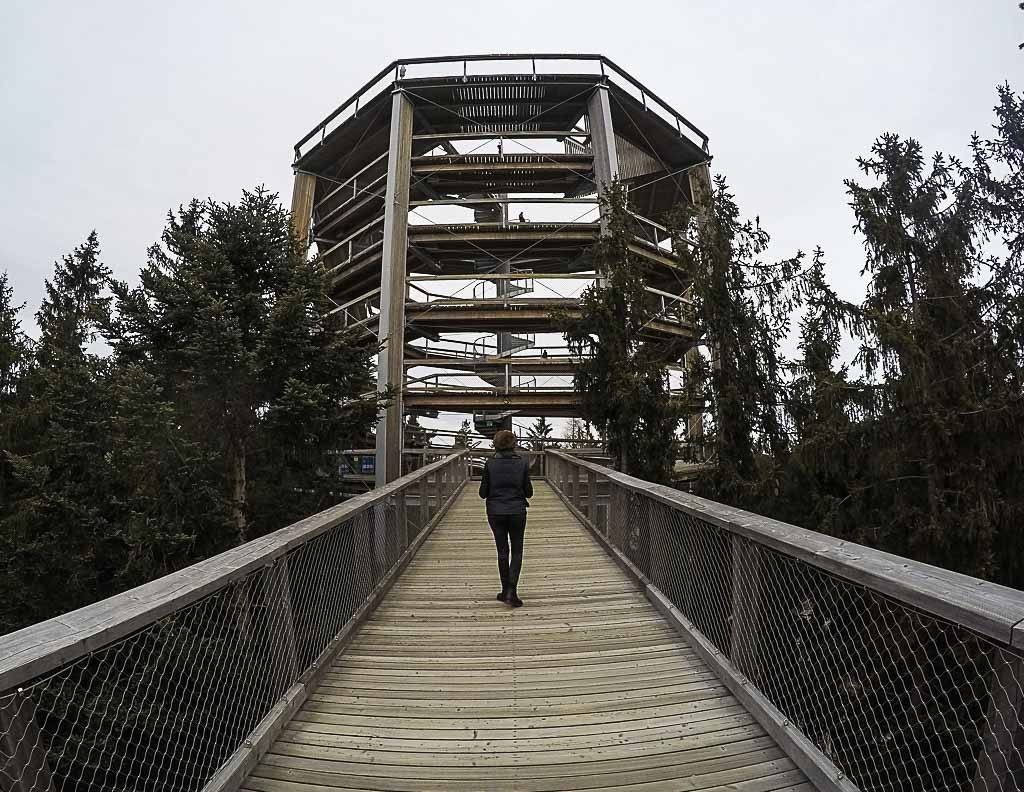 The Treetop Walkway is one of the top attractions in Lipno and you can go on a day trip from Český Krumlov.