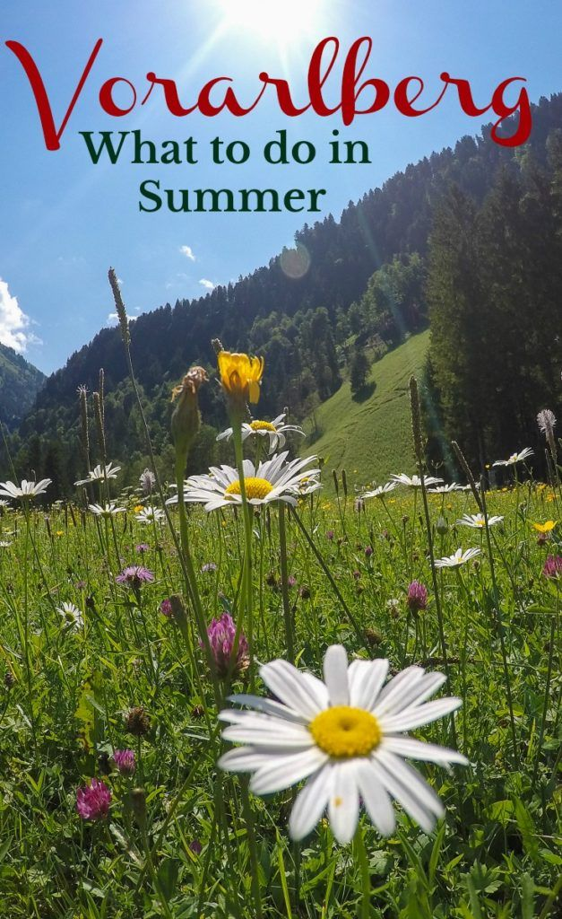 The best summer in Austria! An ultimate guide to things to do in Bregenzerwald, a stunning region in Vorarlberg, Austria. Adventure, adrenaline and lots of fun. How to choose the best hotels in Bregenzerwald, where to eat and travel tips to get around.