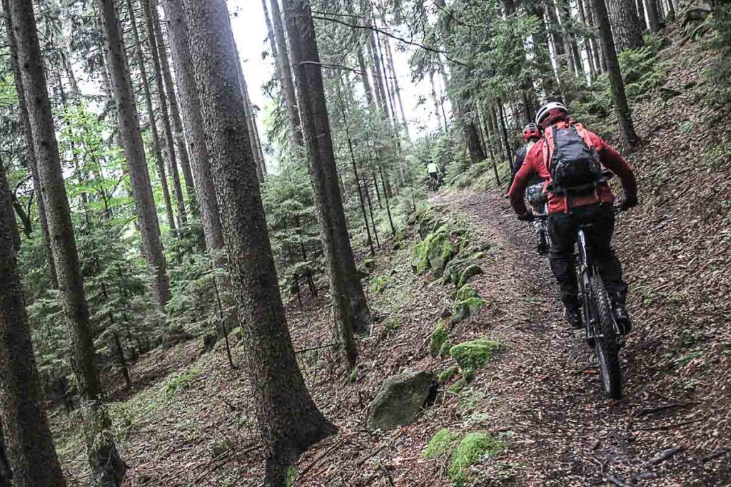 The mountain bike trails in Jeseníky Mountains are amazing, you will feel the adrenaline running through your veins. So don't forget to add this to you list of things to do in the Jeseníky Mountains.