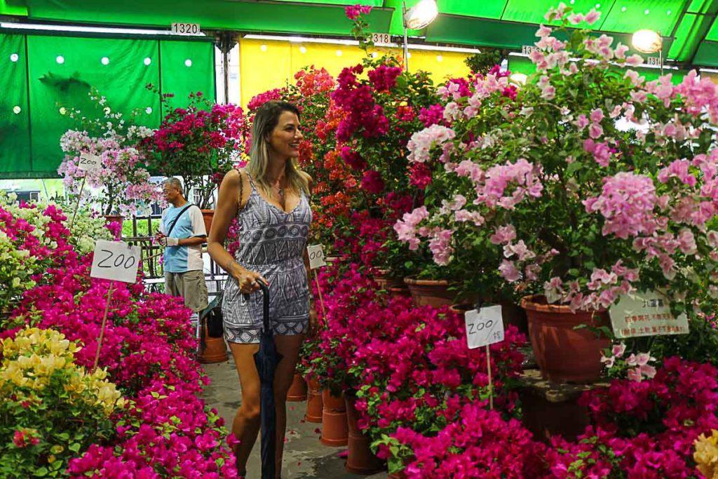 Uma das atrações de Taipei mais diferente é o Mercado de Flores que abre apenas aos finais de semana.