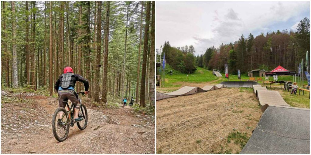 mountain bike com adrenalina em Alpe Cimbra