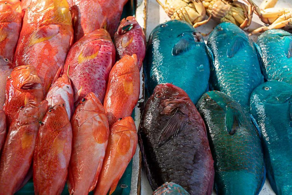 Peixes coloridos no mercado local das Ilhas Maurício.