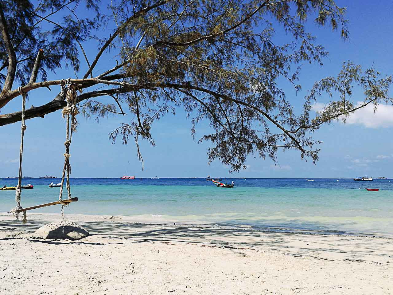 There are many things to do in Koh Tao, starting with beuatiful beaches that are perfect for diving.