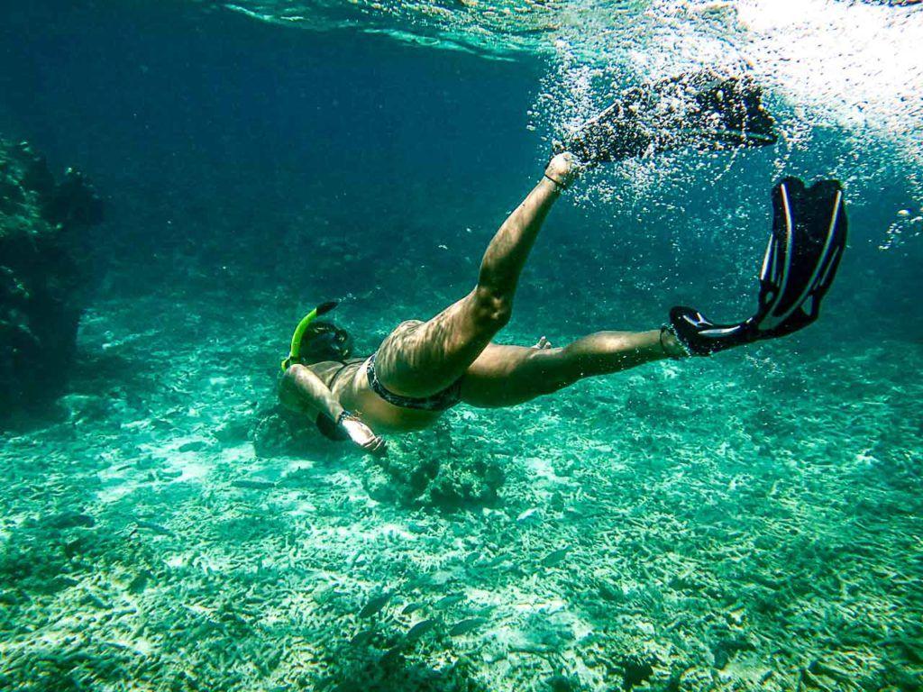 Há vários pontos excelentes para fazer snorkel in Koh Tao, Tailândia.
