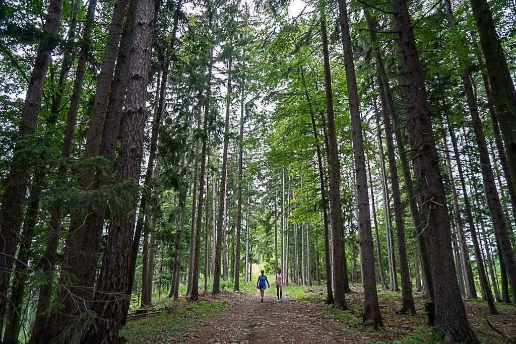 Hiking in Graz: our experience on the Mühlbacherhütte-Pleschkogel trail - Love and Road