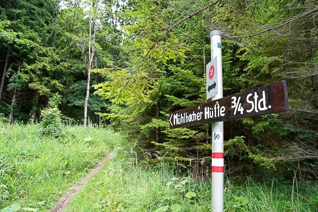 A sign points the direction amongst nature in the Mühlbacherhütte-Pleschkogel Trail.