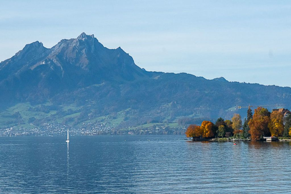 Lake Lucerne, trees and a mountain in the background.